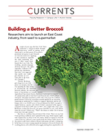 Building a Better Broccoli cover page