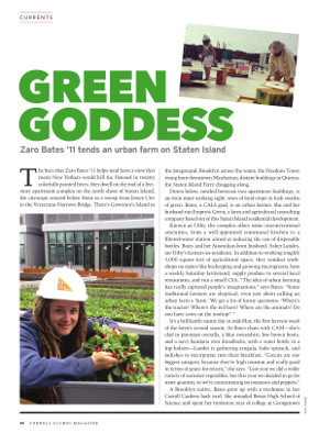 Green Goddess cover page