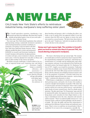 A New Leaf cover page