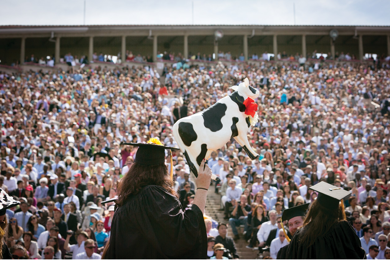 A student holds up a plastic cow and shows it to the graduation audience.