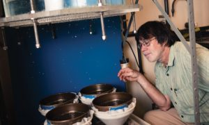 Schindelbeck watches as pipes spray water on sample bowls of soil.