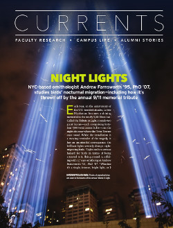 Magazine page image for Night Lights