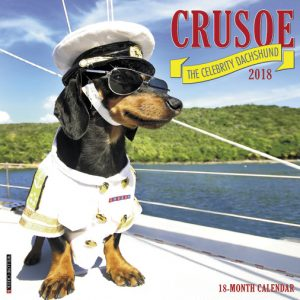 2018 calendar cover page for Crusoe.