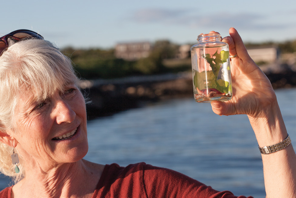 Harvell examines a seaweed specimen in a sample jar.