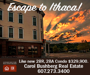 Ad for a condo for sale on the waterfront trail in Ithaca