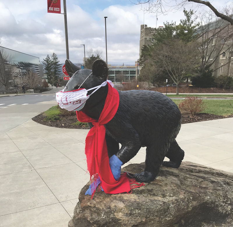 The statue of Touchdown the bear has been bedecked with a white facemask, blue nitrile gloves on his raised paw, and red scarf.